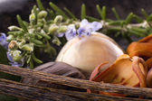 Aromatic herbs and spices — Stock Photo