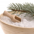 Pine bath items. alternative medicine — Stock Photo