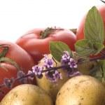 Cut fresh herbs and vegatables — Stock Photo