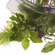 Chopping fresh herbs. - Stock Photo