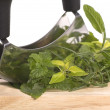 Chopping fresh herbs. — Stock Photo