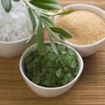 Fresh olive branch and bath salt. spa — Stock Photo