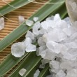 Bath salt and palm leaf — Stock Photo #1791477
