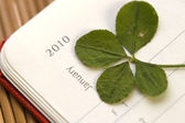 Four Leaf Clover and New Year. January 2010. — Stock Photo