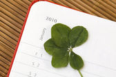 Five Leaf Clover and New Year. January 2010. — Stock Photo
