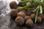 Allspice with fresh rosemary — Stock Photo