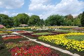 Jardines — Foto de Stock