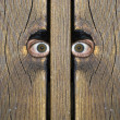 "Watching you"" — Stock Photo"