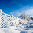 Norwegian winter — Stock Photo