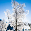 Winter scene from Norway — Stock Photo