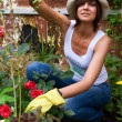 Female Gardening — Stock Photo #1748515