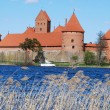 Stock Photo: Castle in Trakai