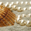 Stock Photo: Shell with pearls