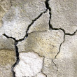 Royalty-Free Stock Photo: Cracked concrete
