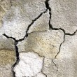 Cracked concrete - Stock Photo