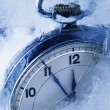 Extreme Weather Concepts - Frozen Time — Stock Photo