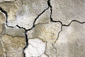 Cracked concrete — Stock Photo
