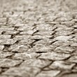 Royalty-Free Stock Photo: Cobblestone way