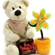Teddy flower and hearts — Stock Photo #1854381