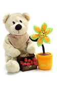 Teddy flower and hearts — Stock Photo