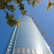 Skyscraper from glass and a steel — Stock Photo #1773090