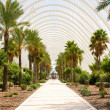 Greenhouse L'Umbracle — Stock Photo