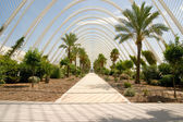Greenhouse L'Umbracle — Stock Photo