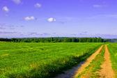 Pole, silnice a obloha — Stock fotografie