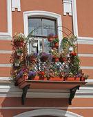 Цветочный балкон — Stock Photo