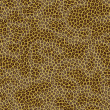 Leopard fur — Stock Photo #1880480