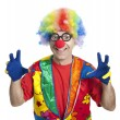 Funny clown — Stockfoto #2630999