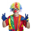 Funny clown — Stock fotografie