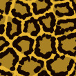 Leopard fur — Stock Photo