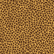 Leopard fur — Stock Photo #2631447