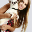 Woman with chihuahua puppy - Stock Photo
