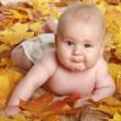 Beautiful child in autumn leaves — Stock Photo