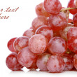 Grapes branch - Stock Photo
