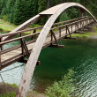 Stock Photo: Bridge in woods