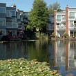 Stock Photo: Condominium Pond