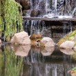 Stock Photo: Waterfall In Park