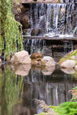 Waterval in park — Stockfoto