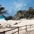 Tulum ruins — Stock Photo #1799089