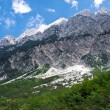 Stock Photo: Slovenia Mountains in the Summer