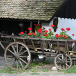 Stock Photo: Holloko village Hungary