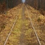 Unused railway — Stock Photo