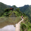 Batad rice fields Philippines - ストック写真