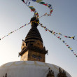 Kathmandu Stupa — Stock Photo #1912246