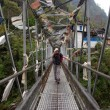 Hanging bridge — Photo #1912496