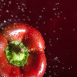 Red bell pepper — Stock Photo #1809521