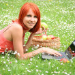 Picnic with laptop — Stock Photo